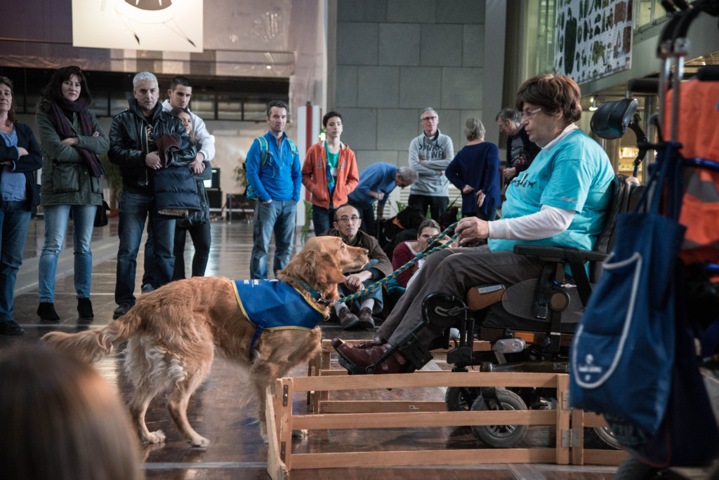 Handicap : des engagements qui ont du chien !