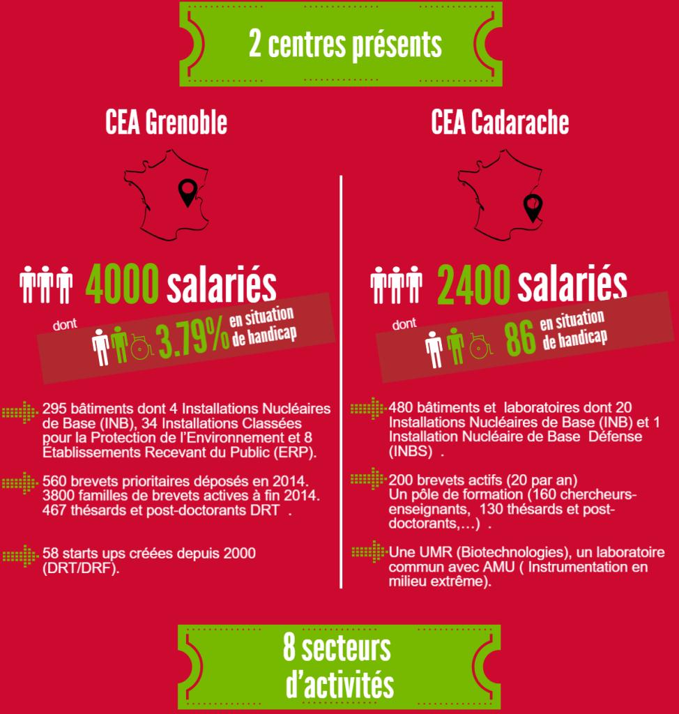 2 centres présents : CEA Grenoble : 4000 salariés dont 3,79% en situation de handicap. 295 bâtiments dont 4 Installations Nucléaires de Base (INB), 34 Installations Classées pour la Protection de l'Environnement et 8 Établissements Recevant du Public (ERP). 560 brevets prioritaires déposés en 2014. 3800 familles de brevets actives à fin 2014. 467 thésards et post-doctorants DRT. 58 starts ups créées depuis 2000 (DRT/DRF). CEA Cadarache : 2400 salariés dont 86 en situation de handicap. 480 bâtiments et laboratoires dont 20 Installations Nucléaires de Base (INB) et 1 Installation Nucléaire de Base Défense (INBS). 200 brevets actifs (20 par an) Un pôle de formation (160 chercheurs-enseignants, 130 thésards et post-doctorants,…). Une UMR (Biotechnologies), un laboratoire commun avec AMU ( Instrumentation en milieu extrême).