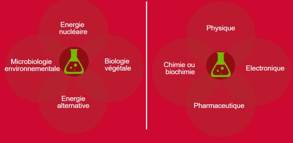 8 secteurs d'activités : CEA Grenoble : Energie nucléaire, microbiologie environnementale, biologie végétale, énergie alternative. CEA Cadarache : Physique, chimie ou biochimie, Electronique, pharmaceutique.