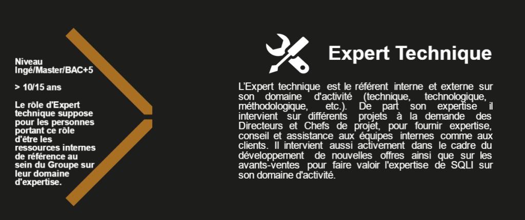 Expert Technique L'Expert technique est le référent interne et externe sur son domaine d'activité (technique, technologique, méthodologique, etc.). De part son expertise il intervient sur différents projets à la demande des Directeurs et Chefs de projet, pour fournir expertise, conseil et assistance aux équipes internes comme aux clients. Il intervient aussi activement dans le cadre du développement de nouvelles offres ainsi que sur les avants-ventes pour faire valoir l'expertise de SQLI sur son domaine d'activité. Niveau Ingé/Master/BAC+5 > 10/15 ans Le rôle d'Expert technique suppose pour les personnes portant ce rôle d'être les ressources internes de référence au sein du Groupe sur leur domaine d'expertise.