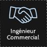 Ingénieur commercial